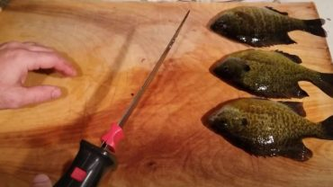 Best Fillet Knife for Crappie
